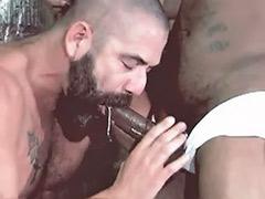 Gays cum inside, Anal inside, Anal cum inside, Cum inside gay, Cum inside anal, Cum inside