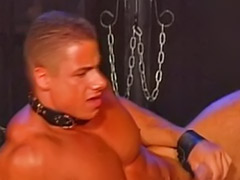 Muscled blowjob, Muscle-sex, Muscle anal, Gay muscle sex, Bondage gay, Muscle
