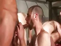 Pollas gay