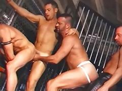 Orgy big, Big orgy, Link, Orgy anal, Gay orgy