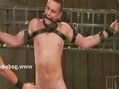 Sex man gay, Man gay, Gay bdsm, Gay mans, Gay man sex, Bdsm couple