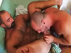 سکس مودار