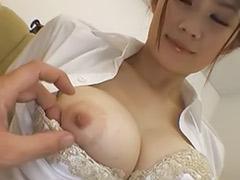 일본 모델, 일본실제
