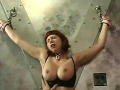 X-mastere, Redhead slut, Redhead boobs, Redhead big boobs, Redhead bdsm, Squeezing