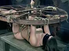 Tits bondage, Tits tease, Tit tease, Tit bondage, Bondage big tits, Bound tits