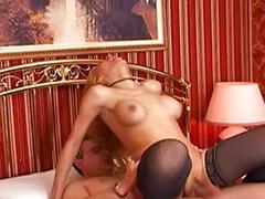Tranny tits, Tranny sucking cock, Tranny sucked, Tranny stockings, Tranny big cock, Tranny big tits