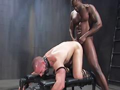 Пара рабы, Господин и рабы, Геи рабы
