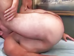 Hairy, anal, Hairy ass masturbating, Hairy ass, Hairy anal, Gay hairy ass, Gay hairy