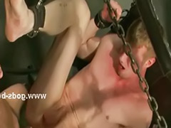 Videos gay, Sex gay video