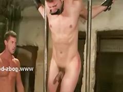 Rope sex, Strong, Gay bdsm, Bdsm couple, Roped, Bdsm gay
