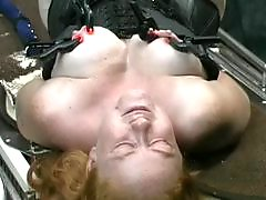 X-mastere, Table mature, Table, Red tits, Red t, Red head tits