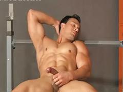 Gym gay, Gym