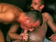 Sucking big cock gay, Gay sucking, Gay suck