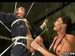Tranny sucked, Tied cum, Sucks tranny, Shemale cum sucking, Guy sucks tranny, Tied up