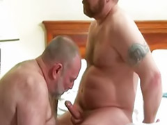 Sex mature hairy, Matures hairy anal, Mature hairy anal, Mature gays, Mature gay cum, Mature cums and cums